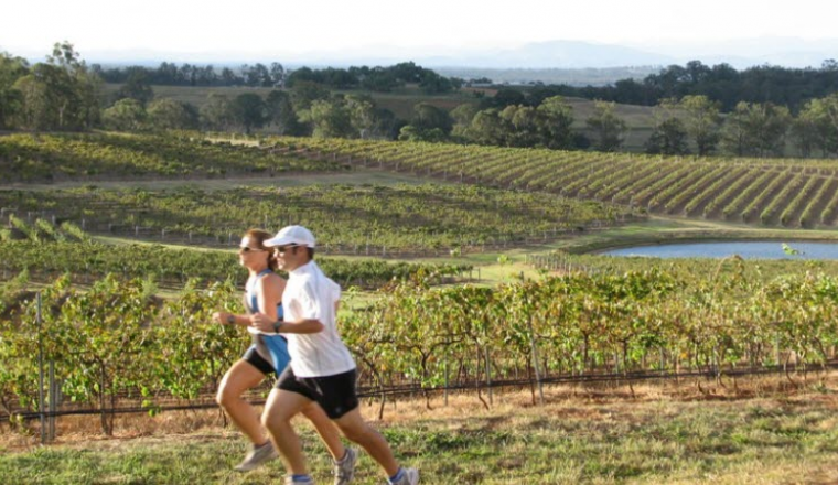 Image by https://www.vintry.com.au/event/winery-running-festival/